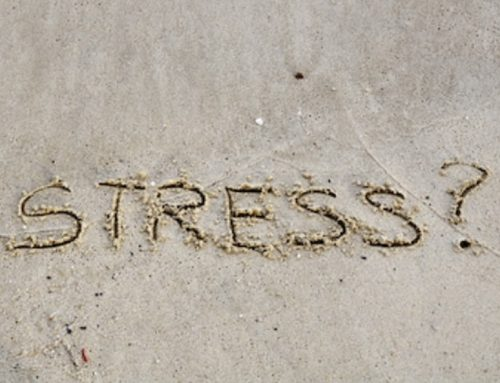 We are all stressed!!!!
